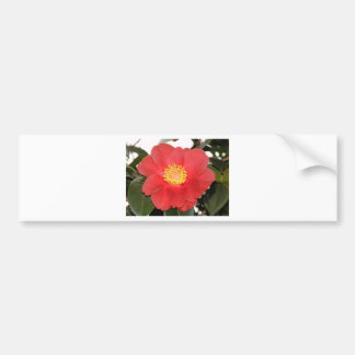 Red Camelia Flower Bumper Stickers