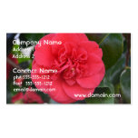 Red Camelia Flower Business Card