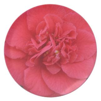 Red Camelia Flower Dinner Plates