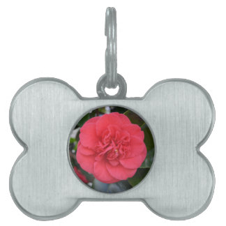 Red Camelia Flower Pet ID Tags