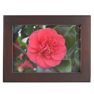 Red Camelia Flower Memory Boxes