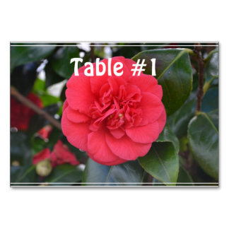 Red Camelia Flower Table Card