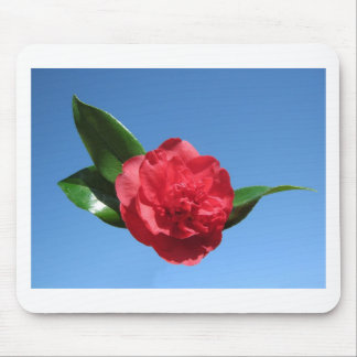 Red Camelia in Blue Sky Mouse Pad