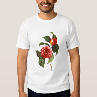 Red Camellia, 1833 T Shirt