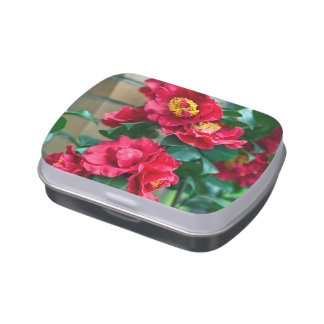 Red Camellia Candy Tin