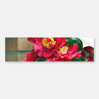 Red Camellia Car Bumper Sticker