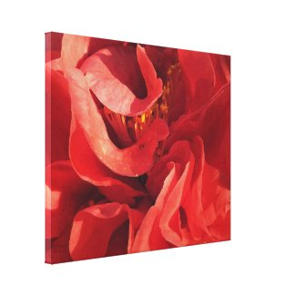 Red Camellia Floral Abstract Canvas Print