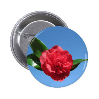 Red Camellia in Blue Sky Pinback Buttons