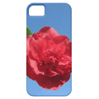 Red Camellia in Blue Sky iPhone 5 Cases