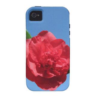 Red Camellia in Blue Sky iPhone 4 Cases