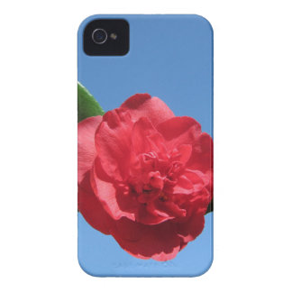 Red Camellia in Blue Sky iPhone 4 Case-Mate Cases