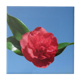 Red Camellia in Blue Sky Ceramic Tile