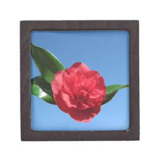 Red Camellia in Blue Sky Premium Keepsake Boxes
