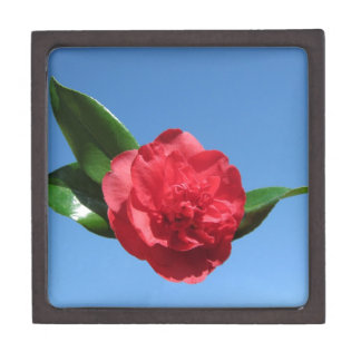 Red Camellia in Blue Sky Premium Trinket Boxes