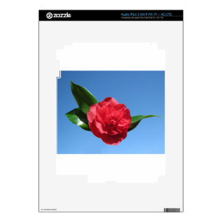 Red Camellia in Blue Sky iPad 3 Decal