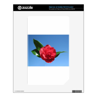 Red Camellia in Blue Sky Decal For NOOK Color