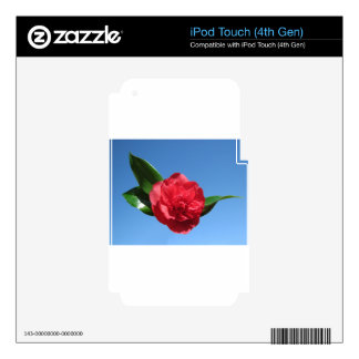 Red Camellia in Blue Sky iPod Touch 4G Skins