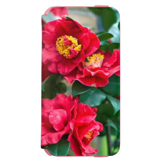 Red Camellia iPhone 6/6s Wallet Case