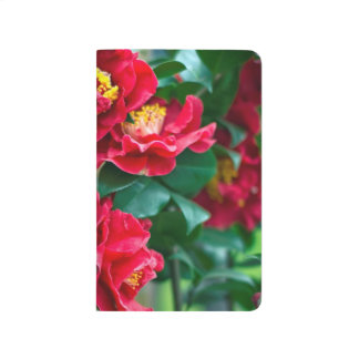 Red Camellia Journal