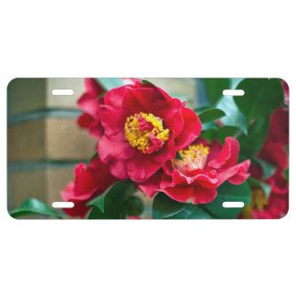 Red Camellia License Plate