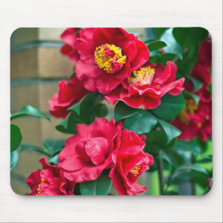 Red Camellia Mouse Pad