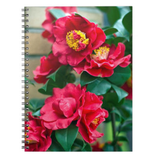 Red Camellia Notebook