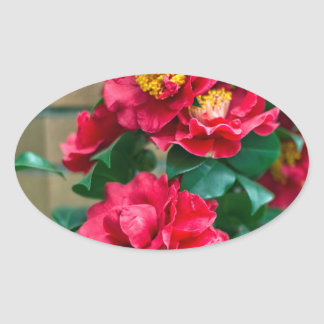 Red Camellia Oval Sticker