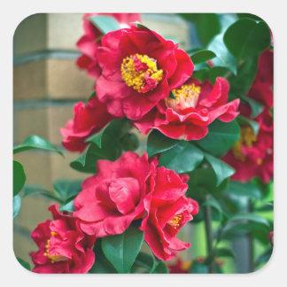 Red Camellia Square Sticker