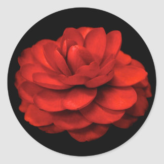 Red Camellia Stickers