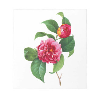 Red Camellias by Pierre-Joseph Redoute Notepad