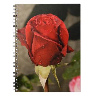 Red Camp David Hybrid Tea Rose Journals