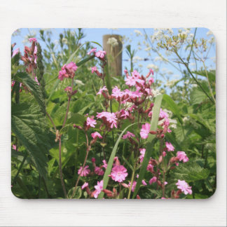 Red Campion Flower Mouse Pad