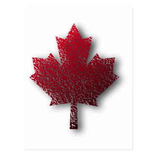 Red Canadian Maple Leaf Postcard