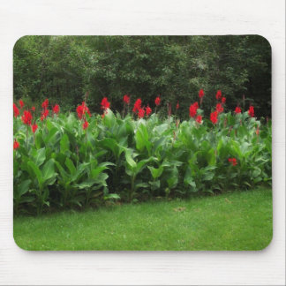 Red Cannas in the Green Northwoods Garden Mousepad