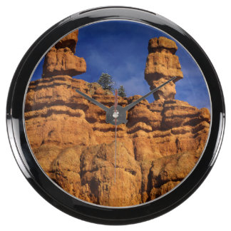 Red Canyon Sandstone Forms In Central Utah Aquarium Clocks