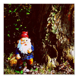 Red Capped Gnome Poster