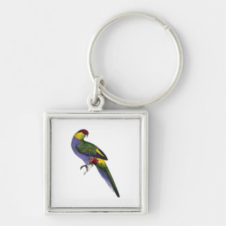 Red Capped Parakeet Parrot Bird Keychain