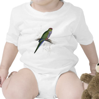 Red-Capped Parrakeet (Female) by Edward Lear Tee Shirts