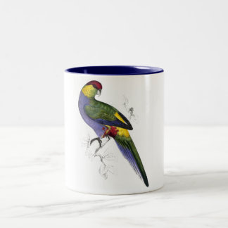Red-Capped Parrakeet (Male) by Edward Lear Two-Tone Coffee Mug