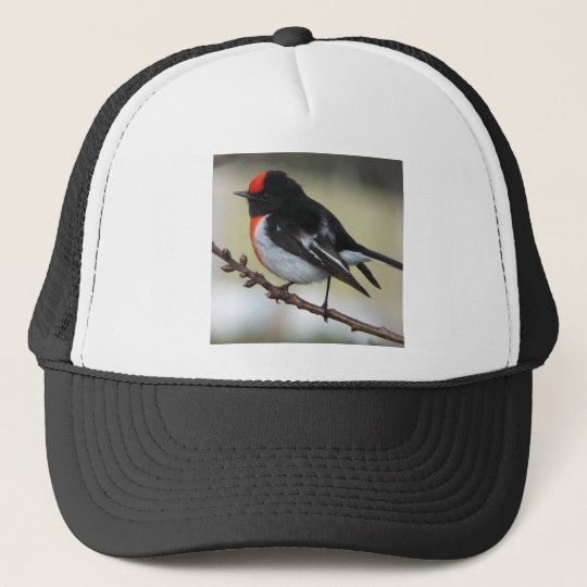 Red Capped Robin Trucker Hat