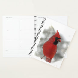 Red Cardinal Bird in Snow Planner