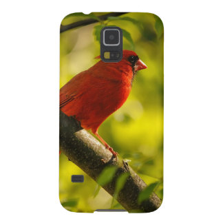 Red Cardinal Bird in Tree by Lois Bryan Galaxy S5 Cover