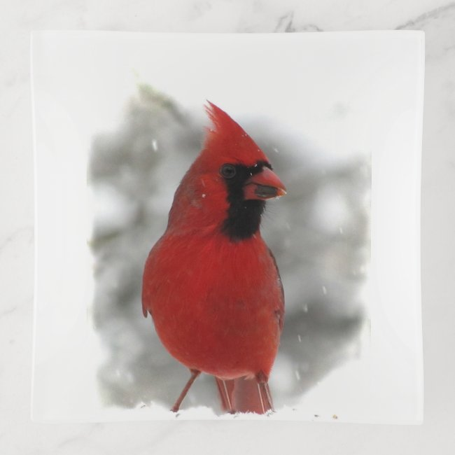 Red Cardinal Bird in Winter Snow Trinket Tray