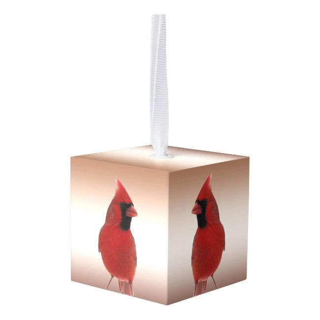 Red Cardinal Birds Animal Cube Ornament
