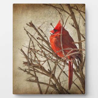 Red Cardinal - Brown Texture Photo Plaque