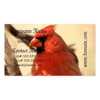 Red Cardinal  Business Cards