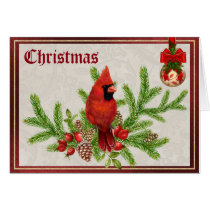 Red Cardinal Christmas Card
