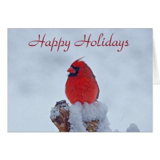 Red Cardinal Holiday Card
