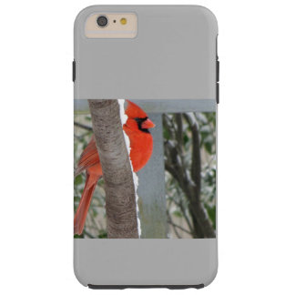 RED CARDINAL IN SPRING SNOW TOUGH iPhone 6 PLUS CASE