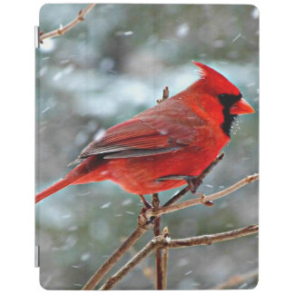 Red Cardinal in the Snow iPad Cover
